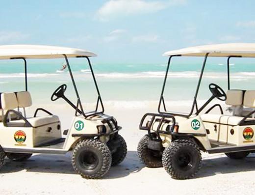Holbox Golf Car Monkeys